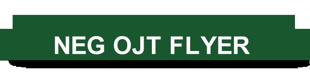 FLYER - opens in new window